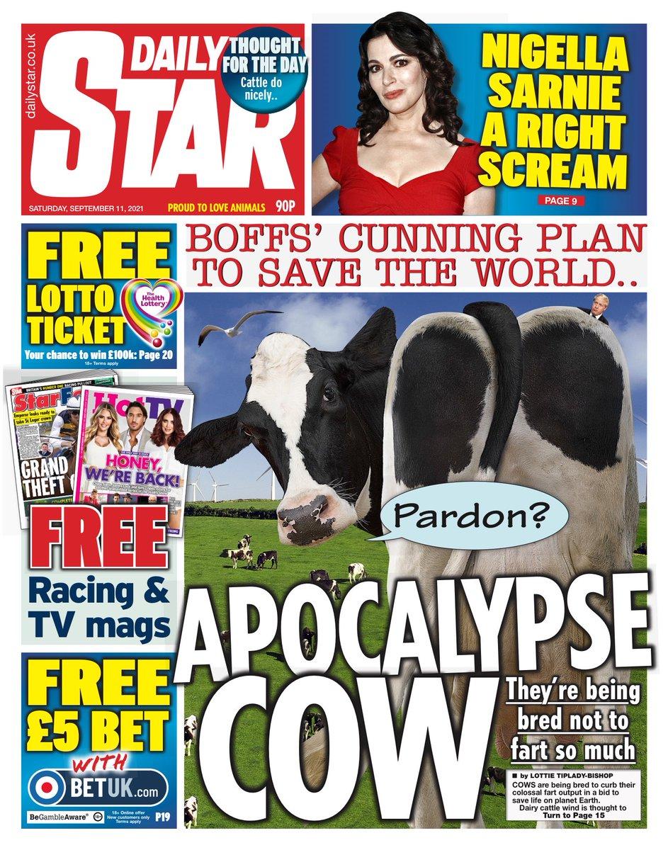 Daily Star - David Beckham newspaper front pages - Digital Spy